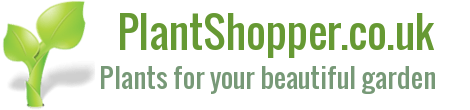 plantshopper.co.uk